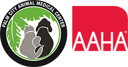 Vet In Palm City | Palm City Animal Medical Center Logo